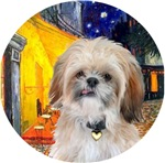 Shih Tzu (P)<br>Terrace Cafe