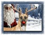 Christmas & Holiday Great Danes