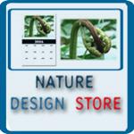 NATURE DESIGN: FLOWERS, TREES, PANORAMIC