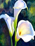 Calla Lily Painting Print