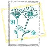 OYOOS US flowers design