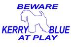 KERRY BLUE AT PLAY BEWARE