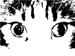 Cats Eyes Black and White Sketch