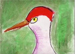 Dana Bird