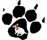 JRT Paw Print