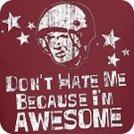 Don't Hate Me For Being Awesome