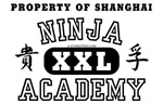 Ninja Acadamy