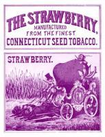 Strawberry no.4