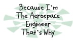 Because I'm The Aerospace Engineer