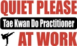 Quiet Please Tae Kwan Do Practitioner At Work