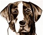 Catahoula Dog Portrait: A Pet Lover's Dream