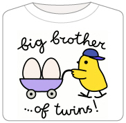 Big Brother of Twins - Chick