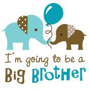 Big Brother to be - Elephant