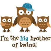 Big Brother of Twins - Mod Owl
