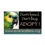 Parrot Adoption Campaign Items