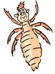 Termite Man
