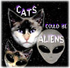Cats Could Be Aliens Stuff