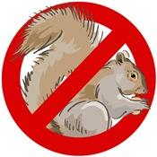 Anti-Squirrel