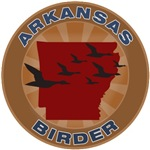 Arkansas Birder
