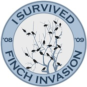I Survived 08-09 Finch Invasion