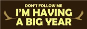 Don't Follow: Big Year