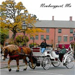 State Street Horse and Carriage