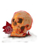 Skull and Red Rose