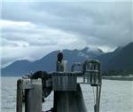 Alaska Scene 12
