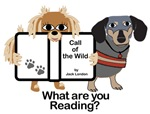 Big Eye Readers (30+). Career and animal readers