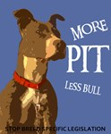 More Pit Less Bull