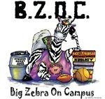 Big Zebra on Campus
