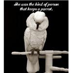keeps a parrot/ cockatoo
