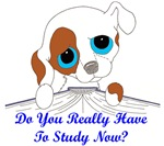 Do You Really Have To Study Now? (dog)