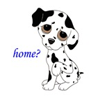 Home?