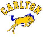 Carlton School Mustangs