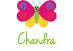 Chandra The Butterfly