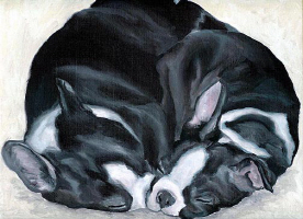 Dog Art: by Breed