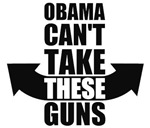 Barack Obama Can't Take These Guns