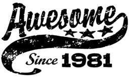 Awesome Since 1981 t-shirt
