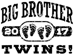 Big Brother Twins 2017 t-shirt