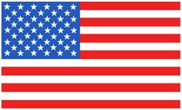 American / US Flag t-shirt