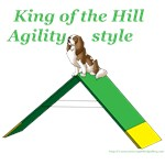 King of the Hill-Agility Style