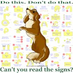 Can't You Read: Golden Ret.