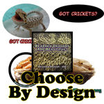 Choose By Design