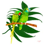 the green parrots