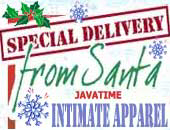 Sexy Santa Intimate Apparel