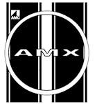 AMX racing stripes