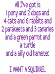 I want a Squirrel  3