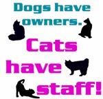 Cat Statements