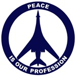 B-1B - Peace Is Our Profession